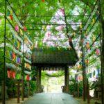 【福岡】暑い夏におすすめ!!小郡市のかえる寺(如意輪寺)の風鈴と可愛い御朱印を求めて