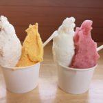 【福岡】果物大国!うきは市でおすすめのジェラート・アイスクリーム3選